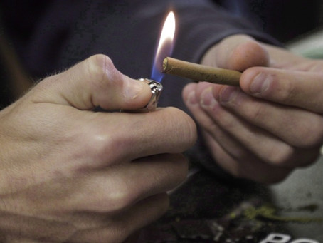 Sask. doctors group wants legal age of 21 for purchasing pot