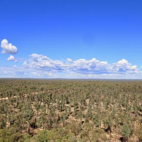 PILLIGA ... Western NSW
