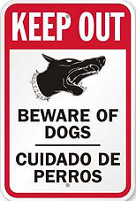 Dogs are a great addition to any security system!