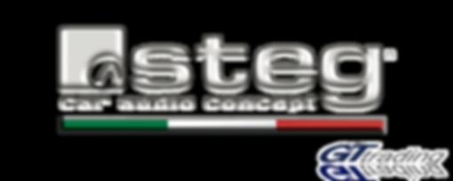 Logo STEG.png