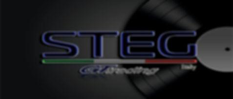 Bunner STEG disco.jpg