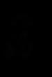 ASOR Logo.png