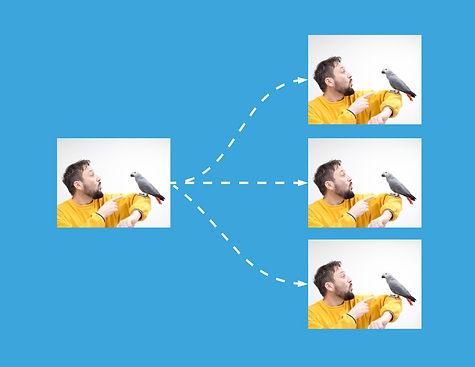 multistreaming-man-with-bird.jpg