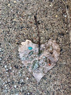 Leaf of Relationships