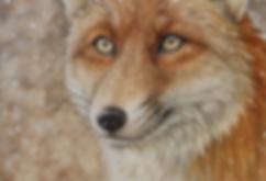 fox watercolour painting vanessa hughes art of sidonie