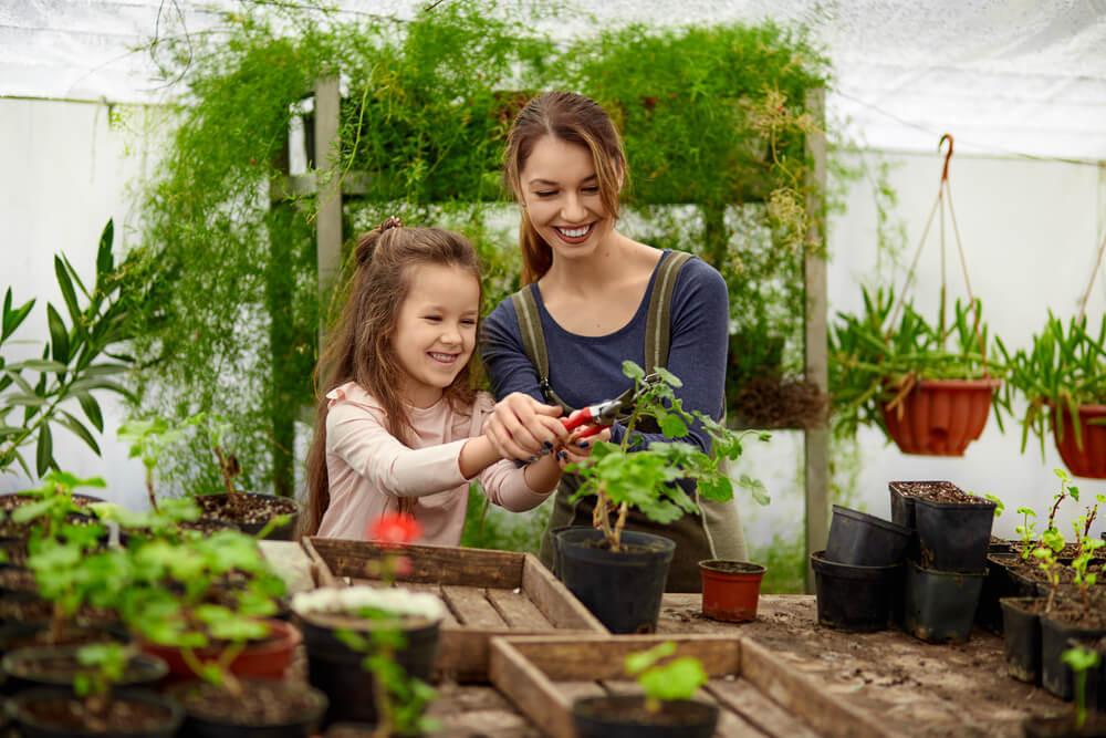 Mejora tu jardín