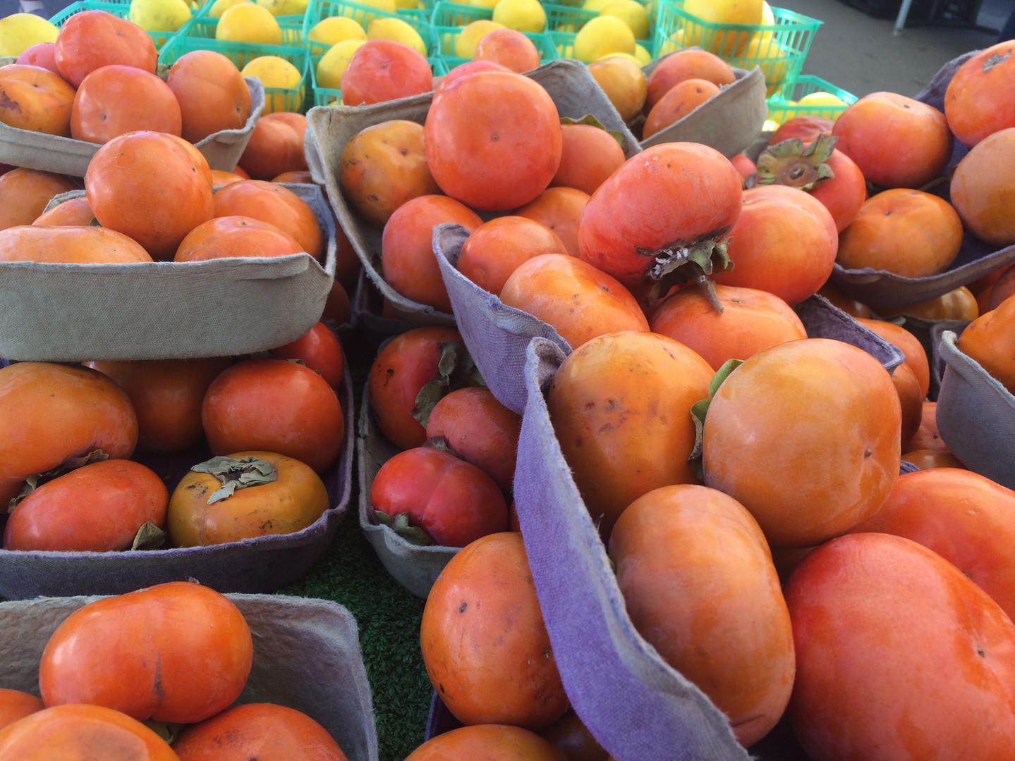 farmers-market-san-diego-california_t20_