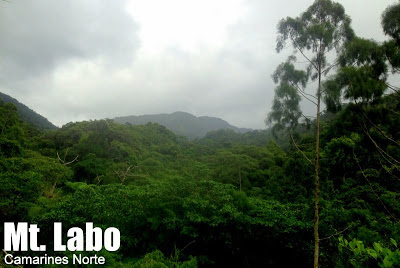 Mt. Labo Watershed