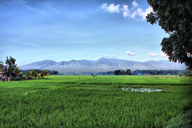 Mount Malindang National Park