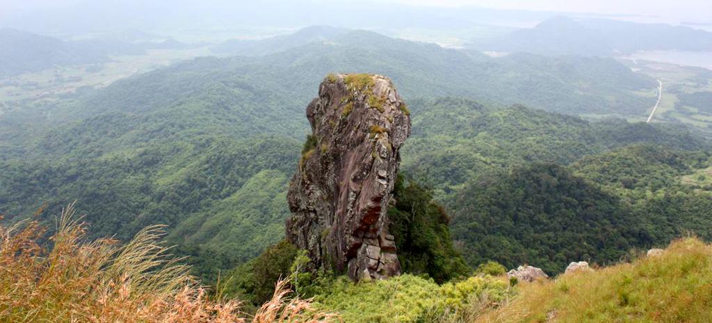 Mts. Palay-palay-Mataas-na-Gulod