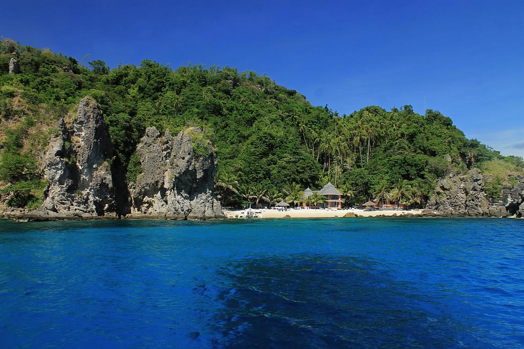 Apo Island Marine Reserve