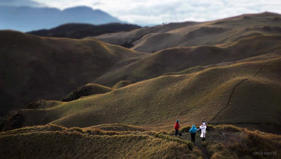 Mt. Pulag National Park