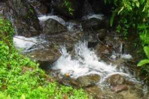 Libunao Protected Landscape