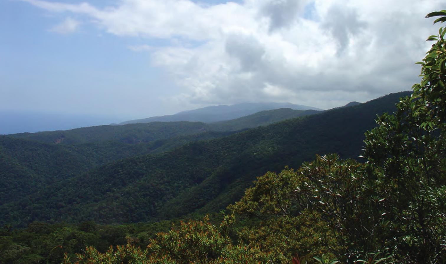 Northern Sierra Madre Natural Park