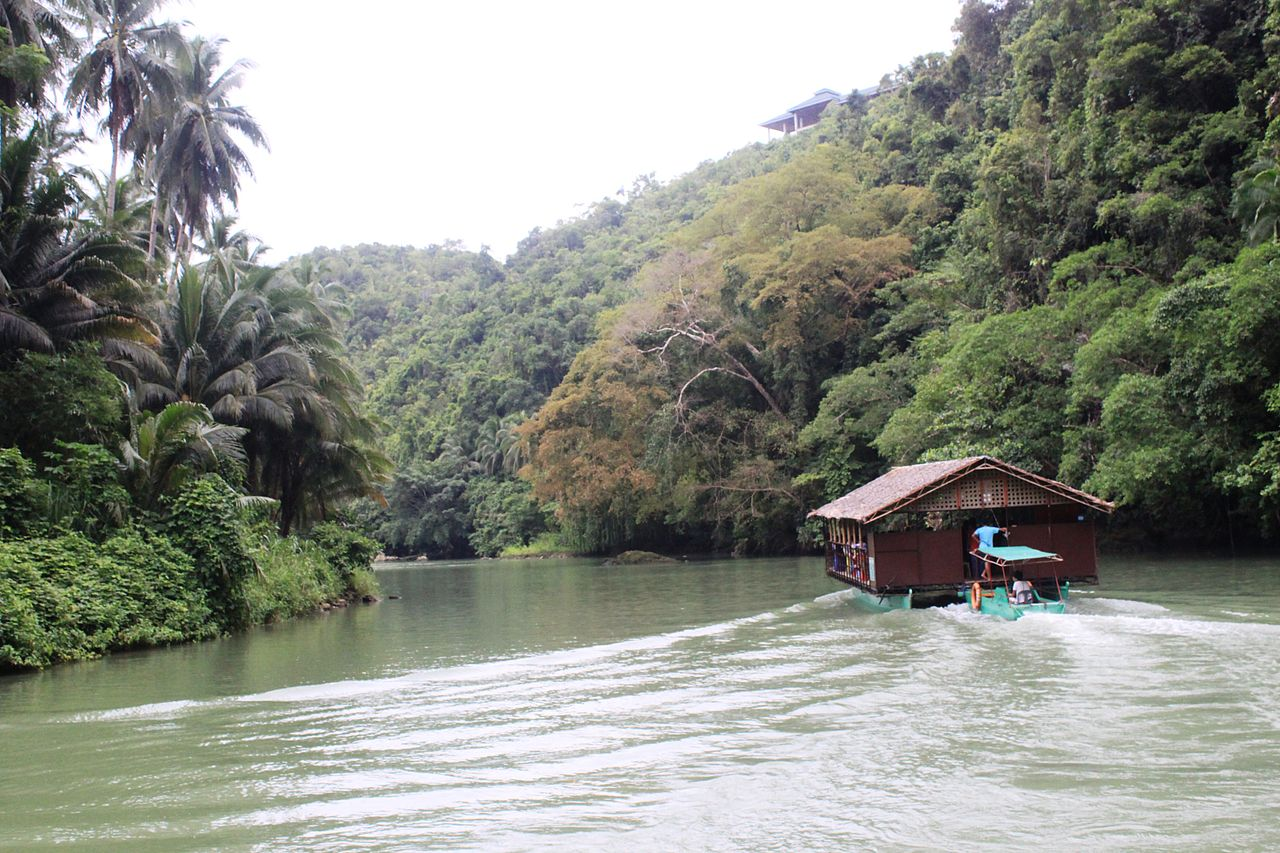 Loboc Watershed Forest