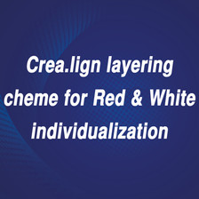 red and white individualization.jpg
