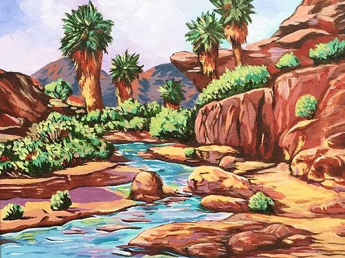 Palm Canyon Scene