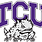 TCU_Horned_Frogs_Logo.svg_.png