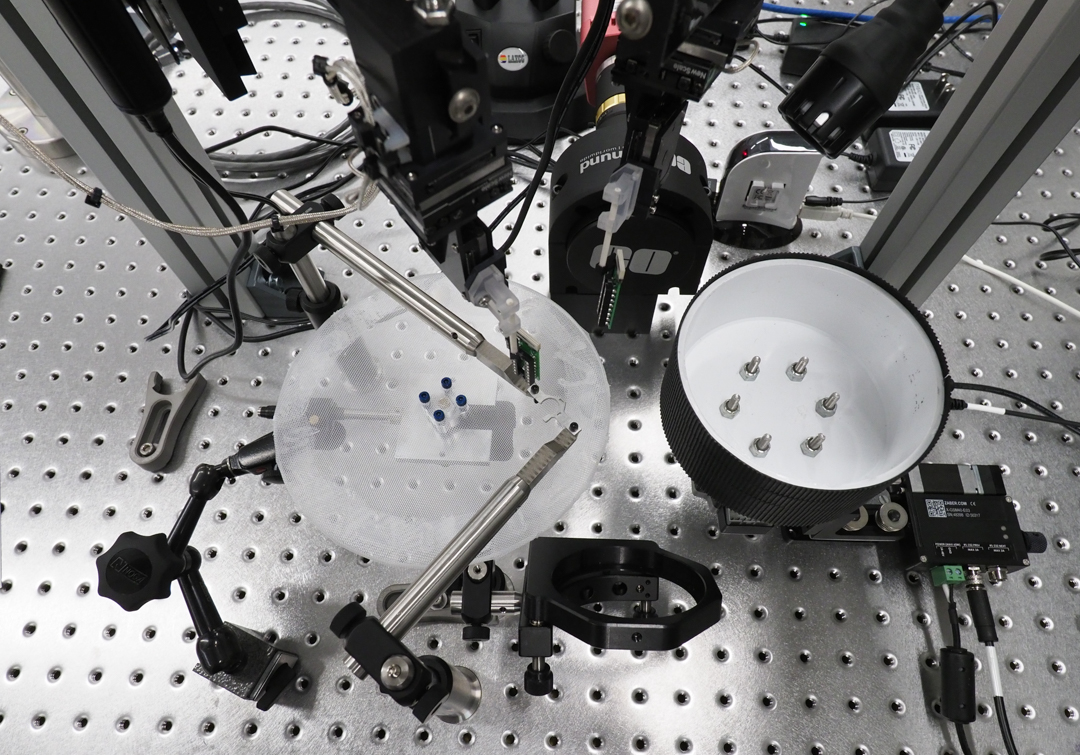 Multi-probe electrophysiology