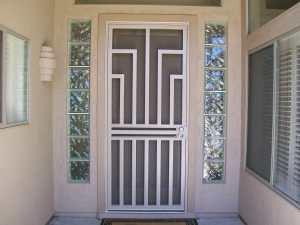 steel security storm door.jpg
