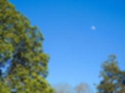 moonEaster.jpg