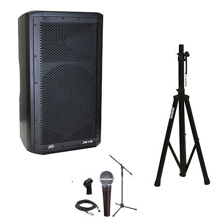 peavey dm stand microphone copy.jpg