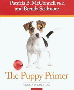 puppy primer.jpg