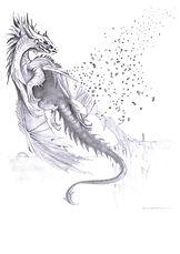 le dernier vol du dragon par sophie duchaine