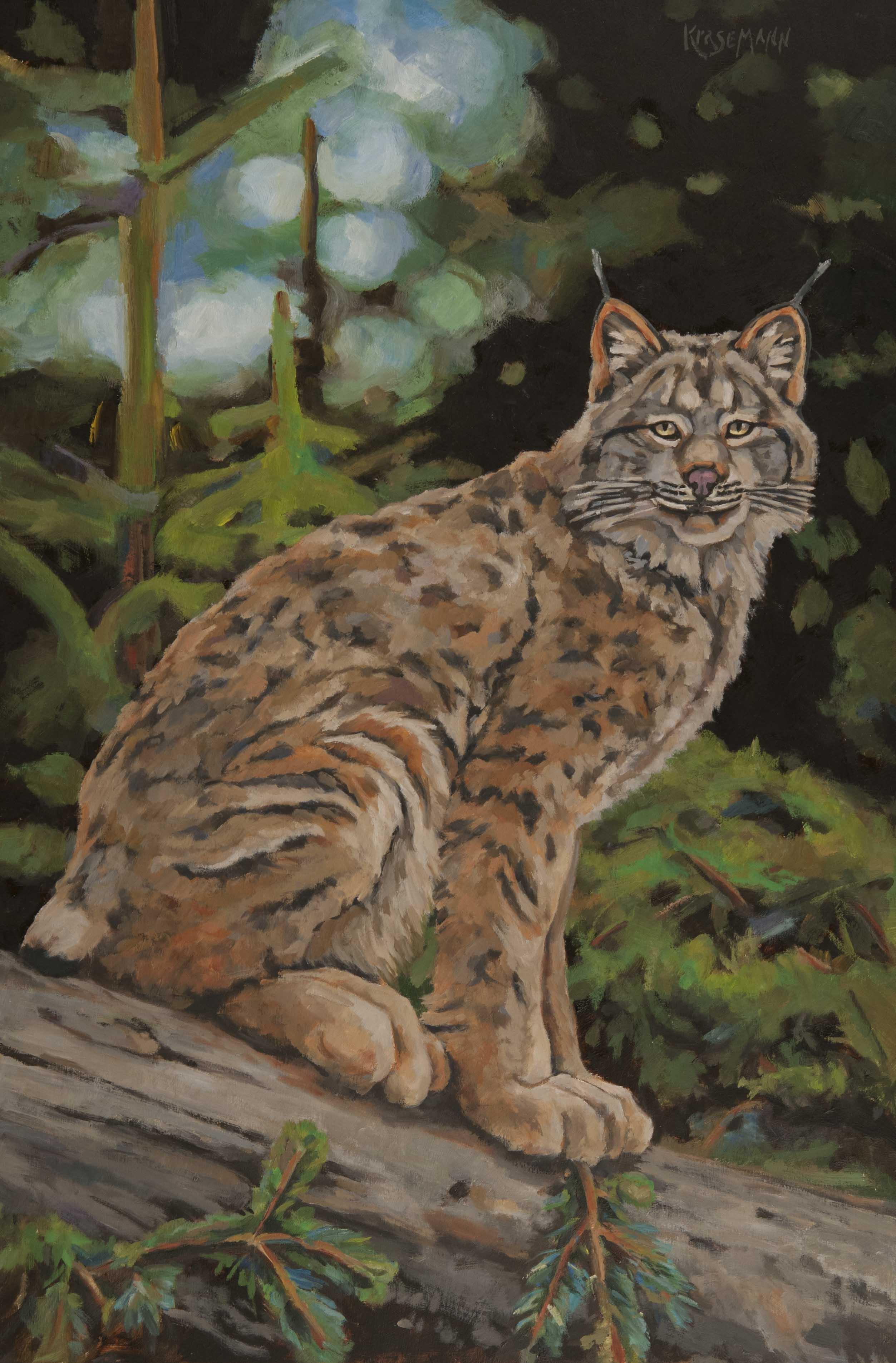 Lynx Log 24x16 Oil