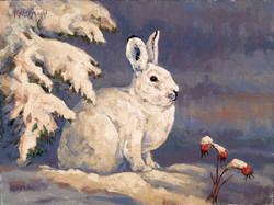 Spot of Sun - Snowshoe Hare