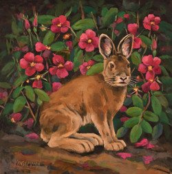 Hare Then Gone 12x12 Oil
