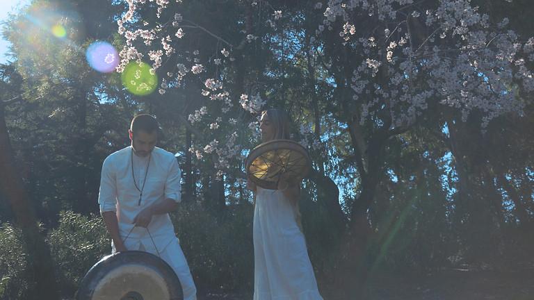 La Magia del Sonido - Cantos Elficos y Gongs
