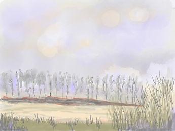 Fields near Ely with a purple sky.jpg