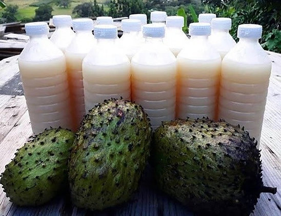 Jamaican Soursop Drink