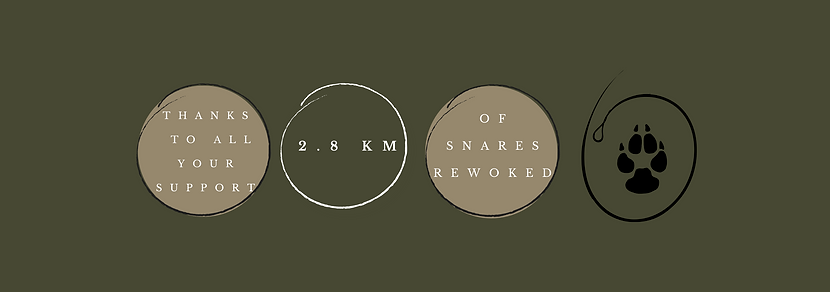 2.8 km snare count Banner.png