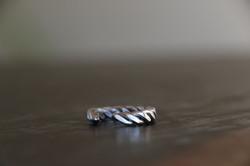 Pangolin ring