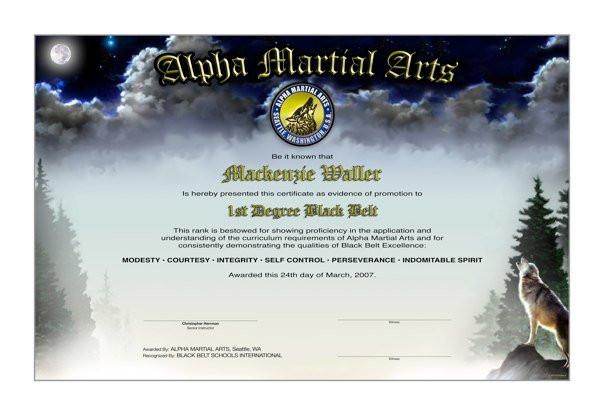 ALPHA MARTIAL ARTS