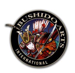 BUSHIDO ARTS INTERNATIONAL