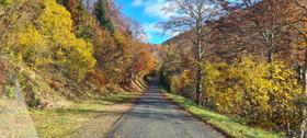 Route de Virieu . Hotonne 2020