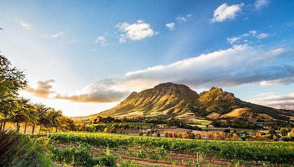 vivere-in-suda-africa-1900x1080-1-1170x6