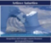 Artico e Antartico-3.jpg