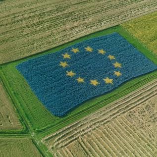 """Politica ambientale europea: dalle origini al """"Green New Deal"""""""