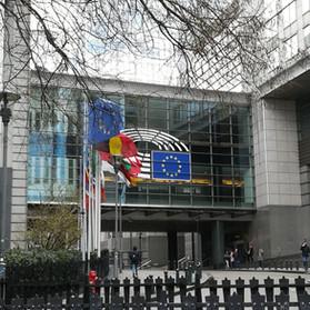 Il Parlamento Europeo: alla scoperta del co-legislatore dell'UE