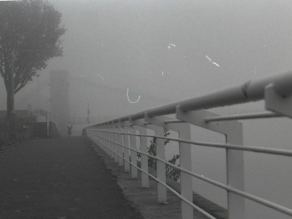 Fog is Back 02 (2016)