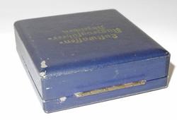 Luftwaffe case for pilot's badge