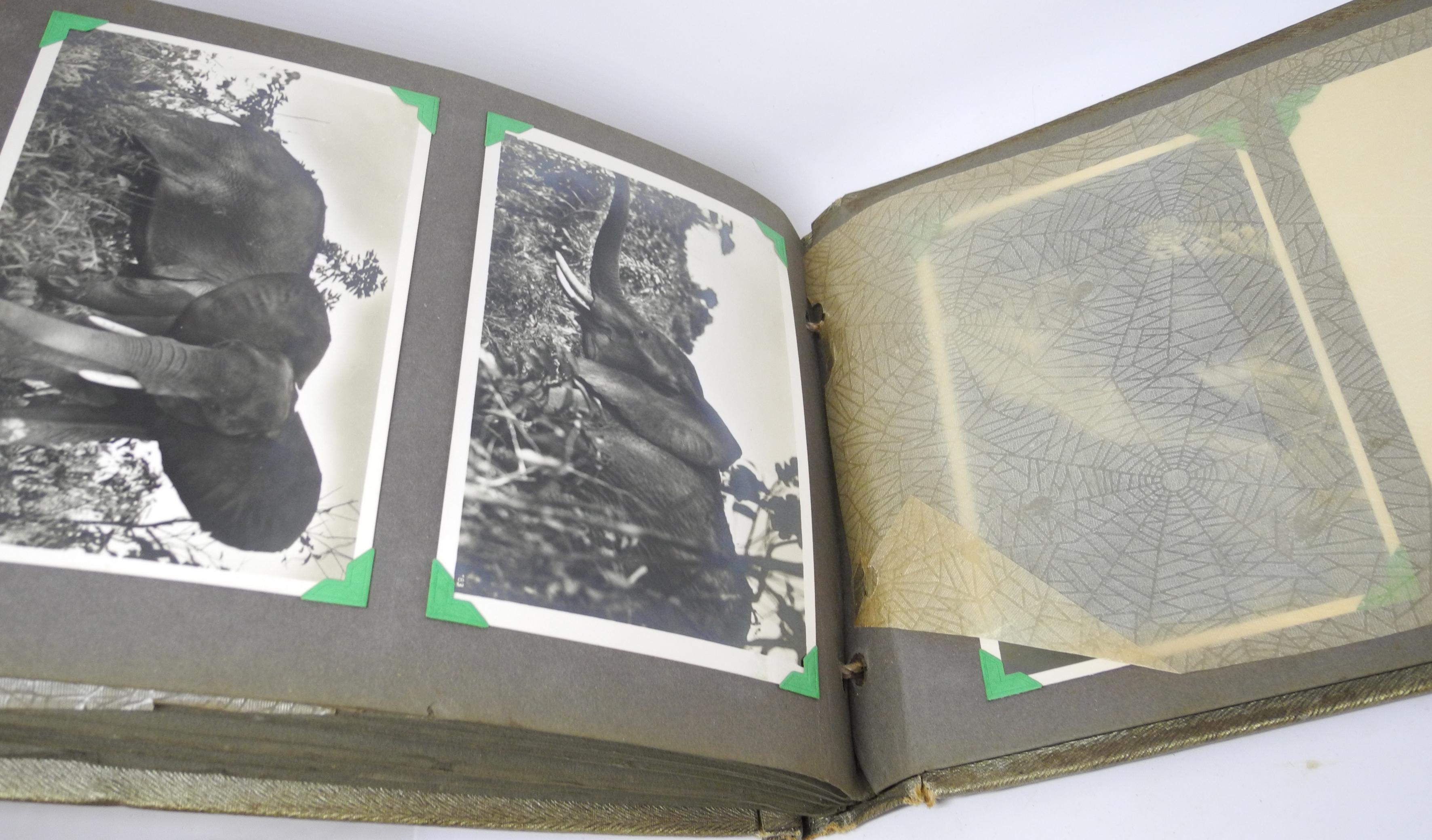 RAF log books and albums 7, 216 sq