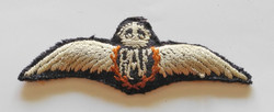 Early WWII RAF pilot wing