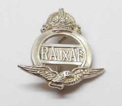 Royal Aux AF badge 2