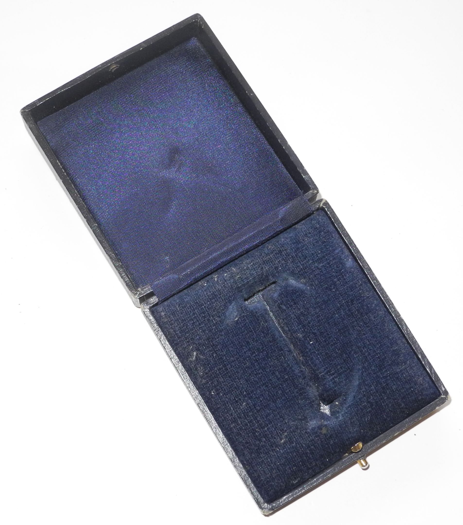 Luftwaffe case for pilot's badge