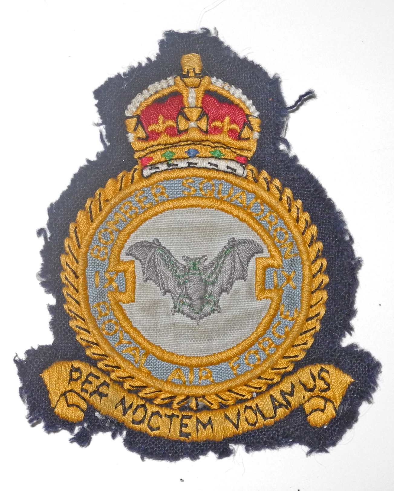 RAF IX squadron badge
